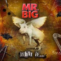 Mr Big - What If...