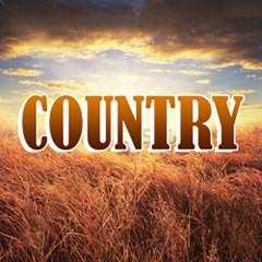 playlist - The very best of country